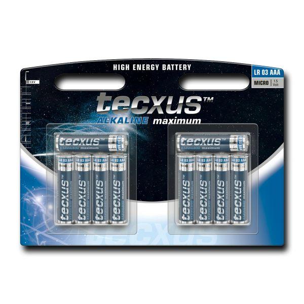 10 Micro-Batterien (AAA) tecxus Alkaline